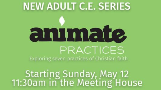 Animate Adult Christian Ed